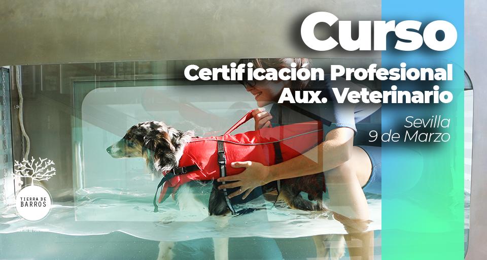curso de auxiliar veterinario en sevilla, marzo 2020